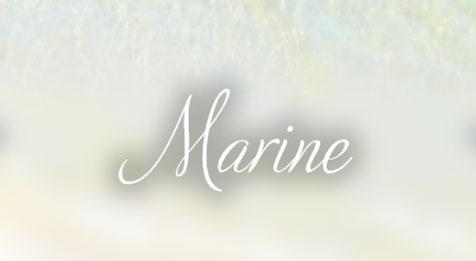 Suite-Marine